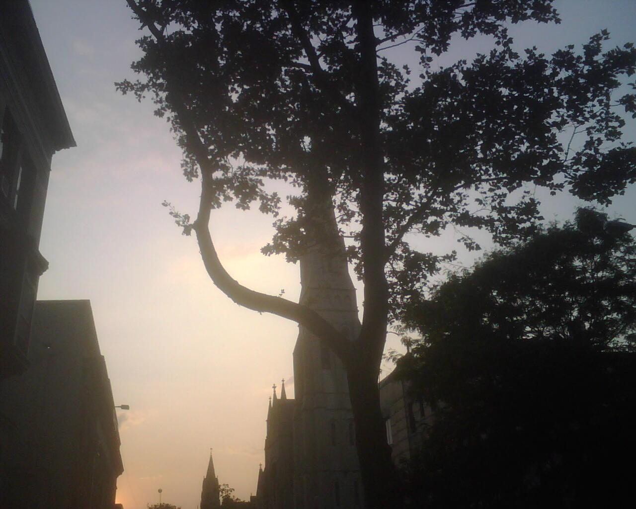 IMG00300-sunset